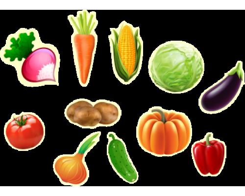 """Магнитное пособие  """"Овощи"""""""